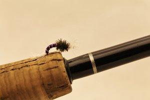 Fjädermygga / Chironomidae Purple