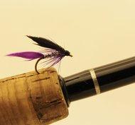 Purple Butcher 12 pack