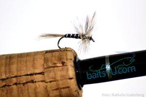 Mygga / Mosquito
