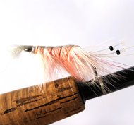 Pattegrisen / Pink shrimp/Räka