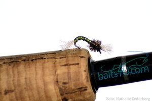 Fjädermygga / Chironomidae Oliv