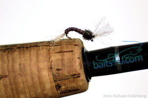 Fjädermygga / Chironomidae Brown